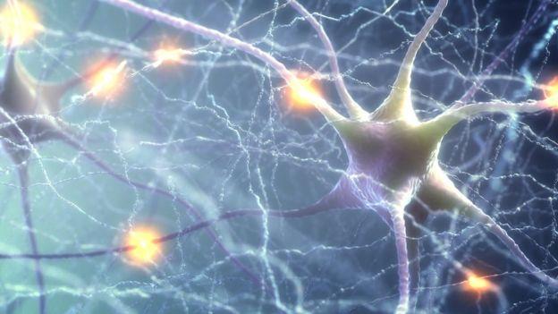 Dibujo de una neurona en primer plano