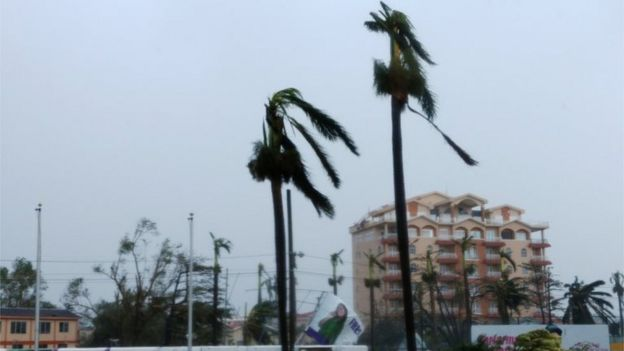 Palm trees are seen after Hurricane Earl have hit, in Belize City, Belize August 4, 2016.
