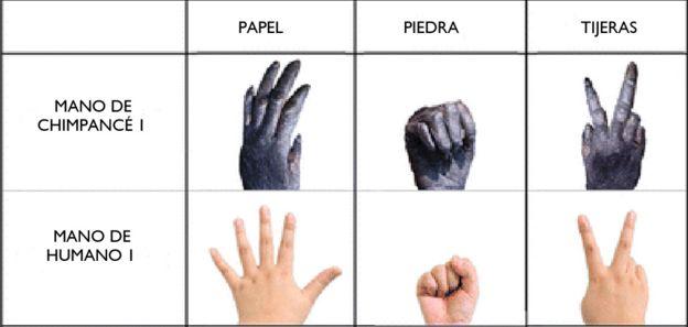 Señales de mano de monos y de humanos