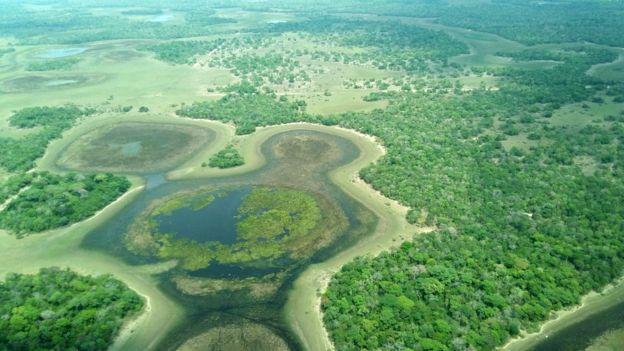 Vista aérea do Pantanal