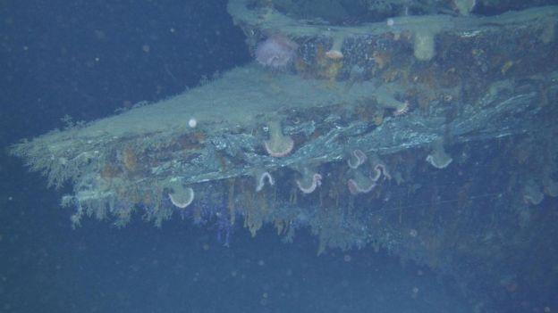 游艇Anona残骸的船首