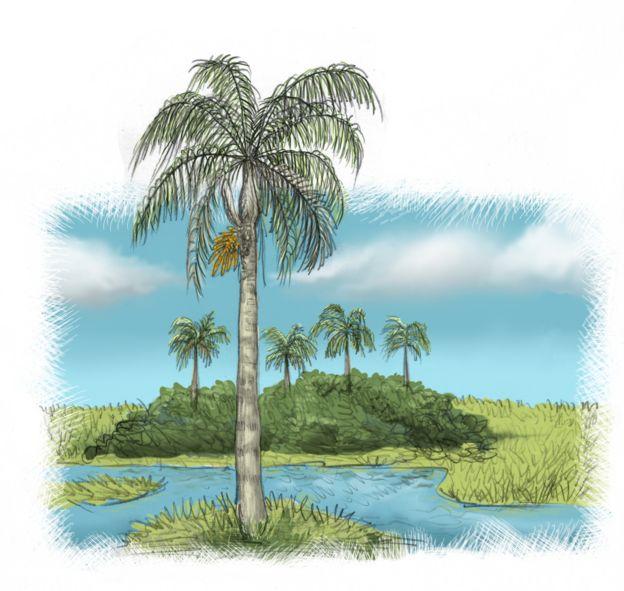 Reprodução de antiga paisagem paulista