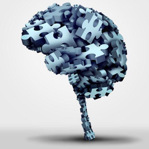 La incógnita del cerebro