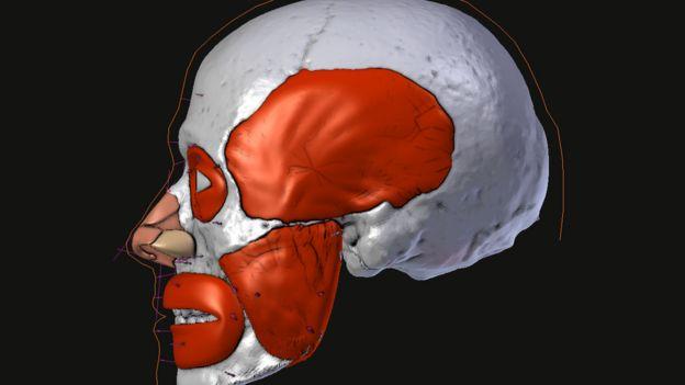 Imagem da reconstituição do rosto de São Valentim