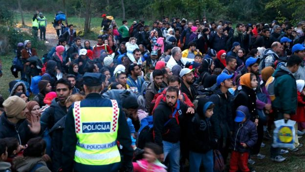 Migrants wait at the border with Hungary after arriving by train at Botovo, Croatia October 16, 2015.