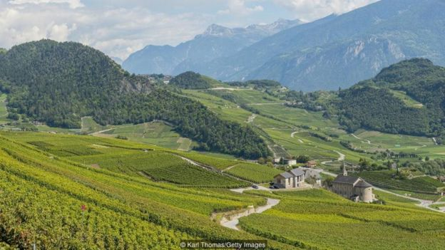 Rhone Valley in southern Switzerland is famous for its terraced vineyards and home-grown produce