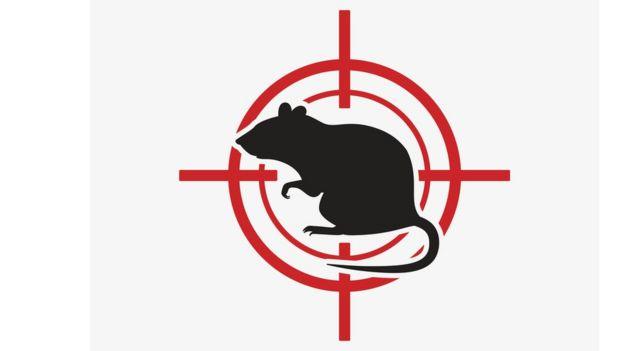 Rata con target
