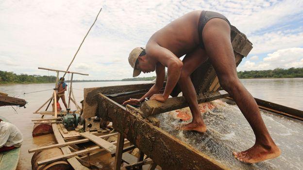 Explotación ilegal de oro en la Amazonía peruana