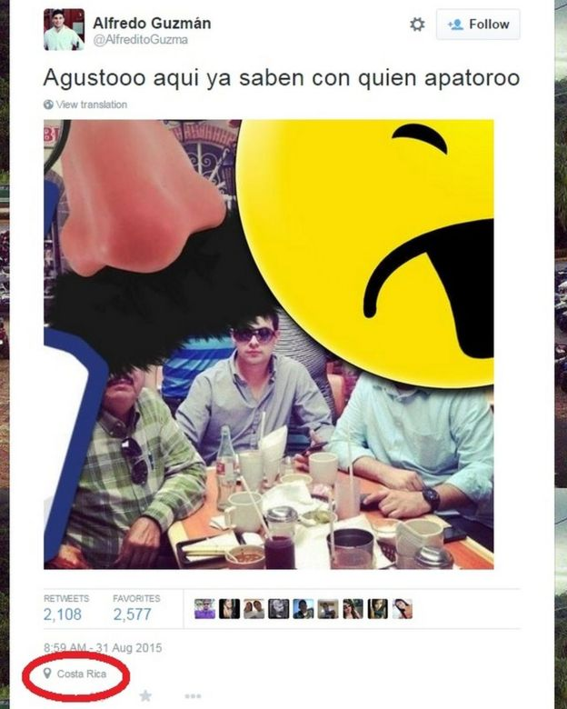 Alfredo Guzman tweet believed