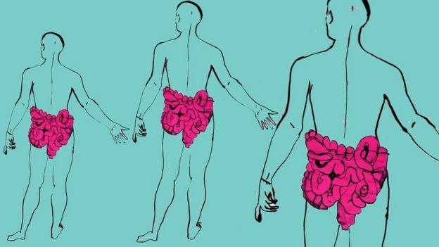بكتريا الأمعاء