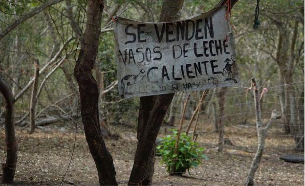 El lugar donde ocurrió el tiroteo en el que murieron 6 personas en Tecomán quedó desierto.