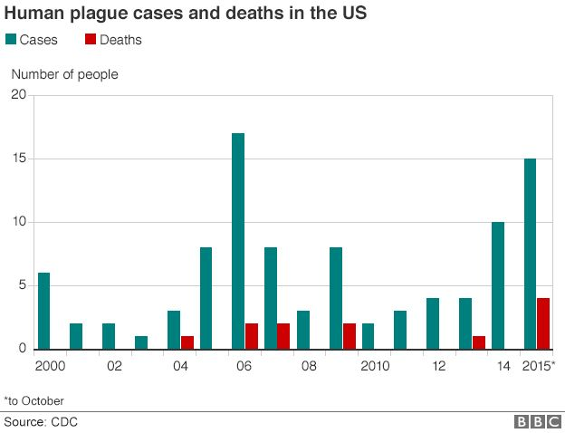 Bar charts showing US plague cases and deaths from 2000 to 2015