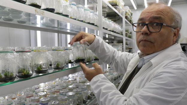 Gustavo Zúñiga
