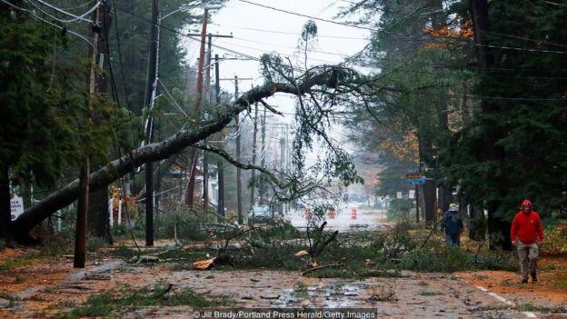 Trận bão bom tấn công Maine, Mỹ, khiến cây cối trốc gốc và nhiều đường dây điện bị đứt hỏng hồi tháng 11/2017