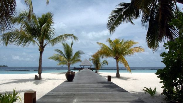 Palm trees and a wooden walkway at the Coco Palm resort on Boduhithi Island, in the Maldives.