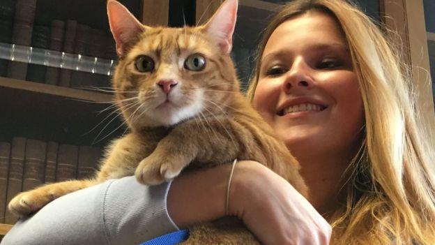 O gato Jasper