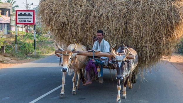 தஞ்சாவூர் விவசாயி (கோப்புப்படம்)