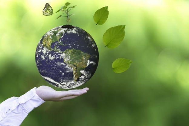Planeta tierra, mano, mariposas, hojas.