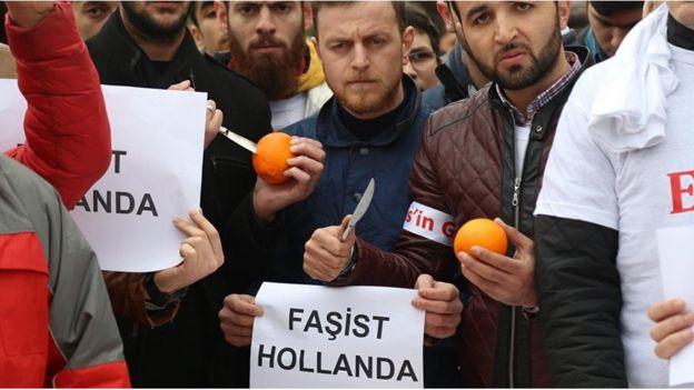 Hollanda protestosu