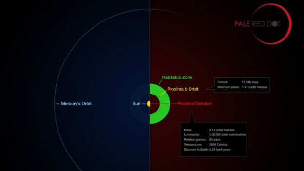 Proksima b planetinin orbitası Proksima Sentavr ulduzunun yaşayış zonasında yerləşir