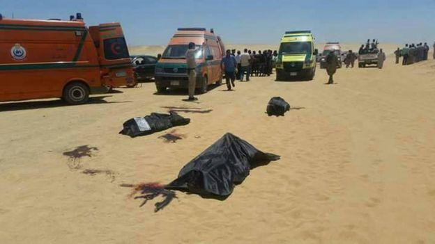 سيارات إسعاف وضحايا في موقع الحادث