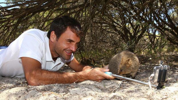 Roger Federer tomándose una foto con un quokka.