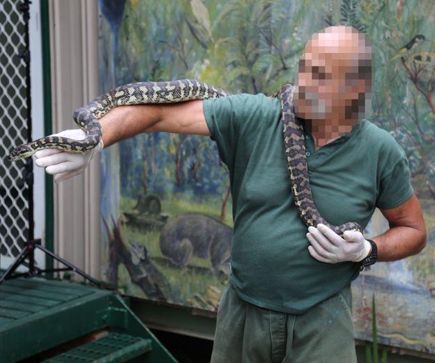 L'un des 14 animaux du centre de prise en charge des espèces sauvages