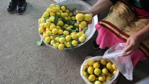 limon- Celilabad
