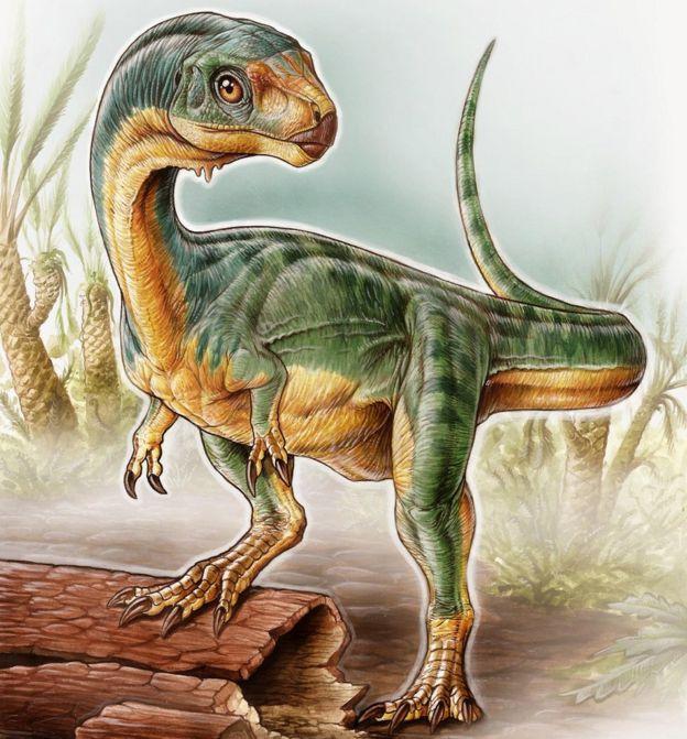 Chilesaurus