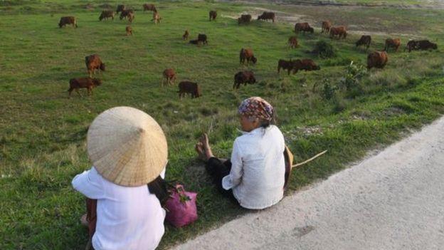 Xung đột đất đai thường bắt nguồn từ giá đền bù cho nông dân quá thấp.