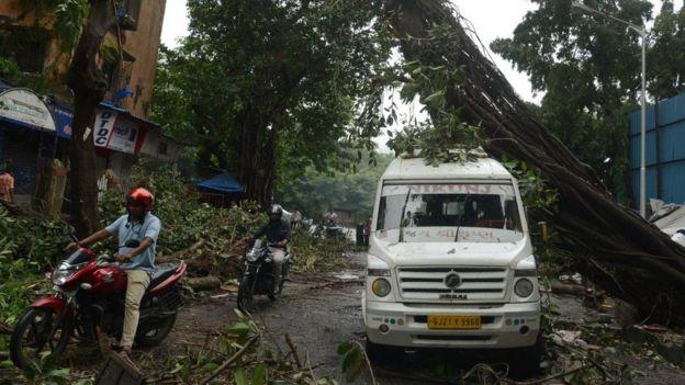 Motoristas pasan al lado de un vehículo dañado por la caída de un árbol en Mumbai.