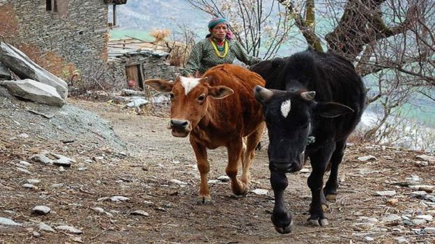 لماذا تُجبر النساء في نيبال على مغادرة بيوتهن أثناء الحيض؟