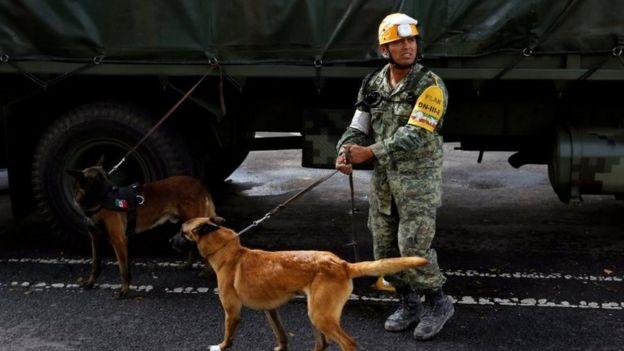 Un soldado mexicano con dos perros de rescate en Ciudad de México.