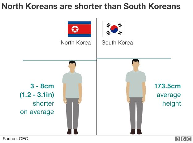 Graphic: Average height comparison of North and South Koreans
