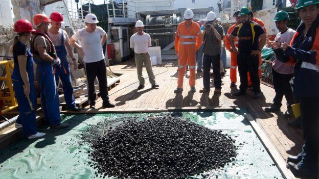 Un grupo de trabajadores observan nódulos de manganeso de la zona Clarion-Clipperton.