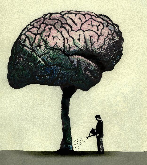 Árbol en forma de cerebro