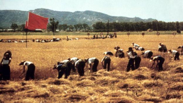 Brigada agrícola en 1971