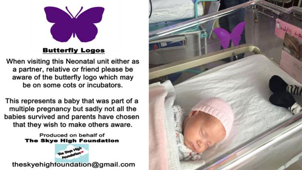 Butterfly logo poster and callie in a cot