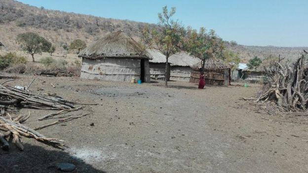 Nyumba takriban 40 za mzee laiboni