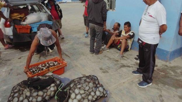 Pescadores intentando vender su marisco en el puerto de Pisco