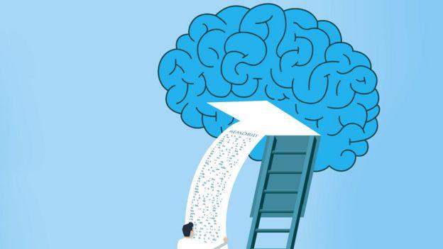 Ilustración de un cerebro