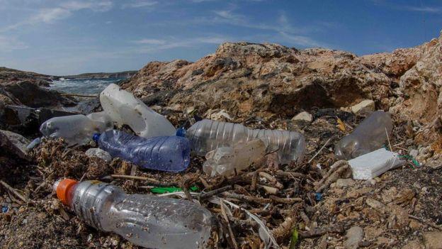 sahildeki plastik şişeler
