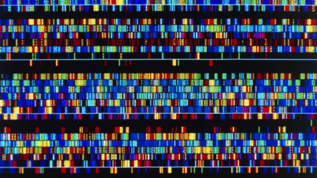 Secuencia de ADN humano