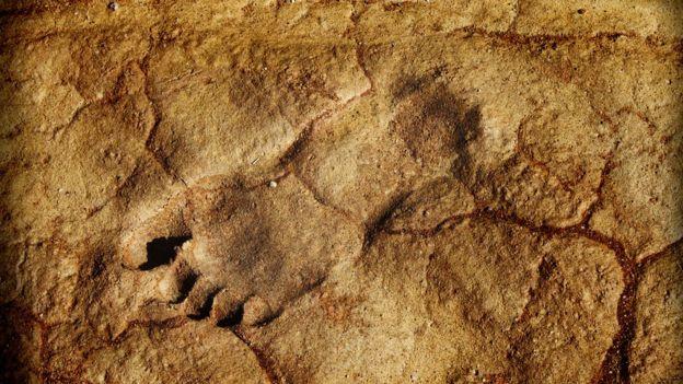 Una huella de un pie
