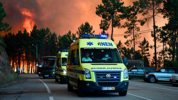 I just noticed that Portugal had 62 deaths from a huge forest fire. have any of you heard about this?   (Click on Source)