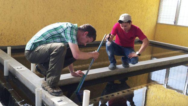 Ingeniero Monroe Weber-Shirk trabaja en una planta junto a un joven integrante de la comunidad