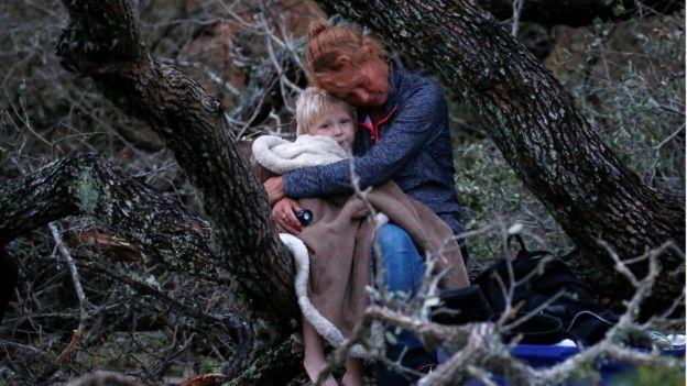 Una madre y su hijo esperan ser rescatados sentados en un árbol