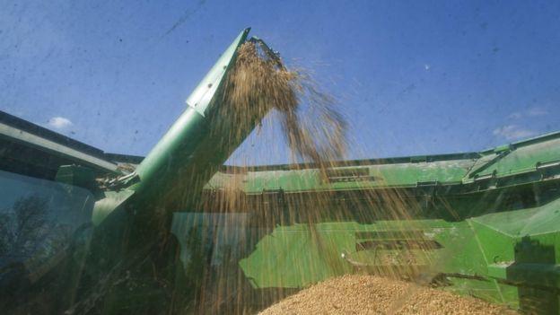 中國計劃向美國徵收關稅的產品中,包括大豆、小麥等