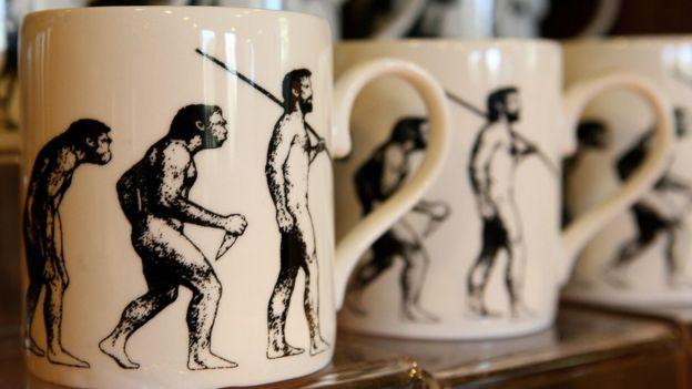 Jarros con imágenes de evolución