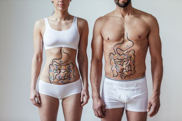 Imagem mostra homem e mulher com abdomen pintado simulando intestinos e bactérias